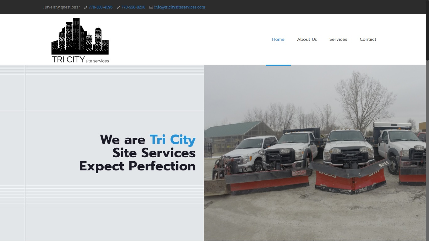 tricity site services